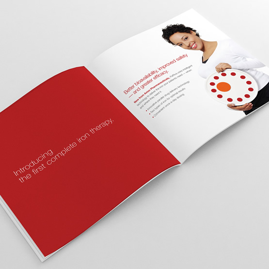 feriva brand promotional booklet